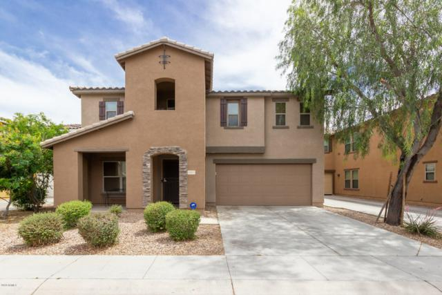 10817 W Pierson Street, Phoenix, AZ 85037 (MLS #5932836) :: Yost Realty Group at RE/MAX Casa Grande