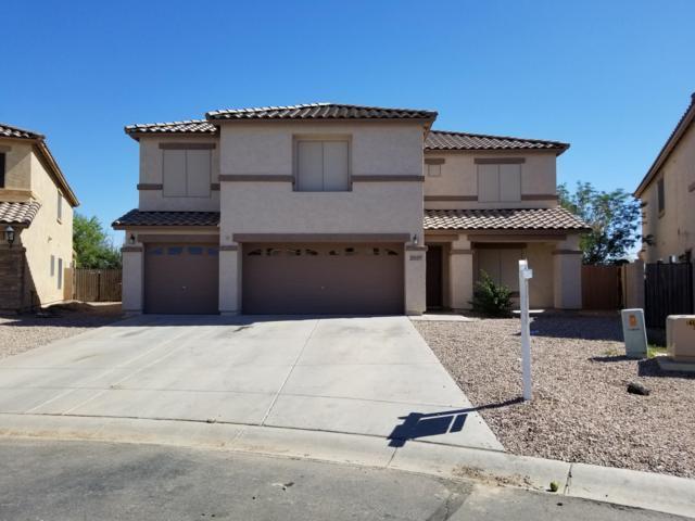 43555 W Cowpath Road, Maricopa, AZ 85138 (MLS #5932902) :: Team Wilson Real Estate