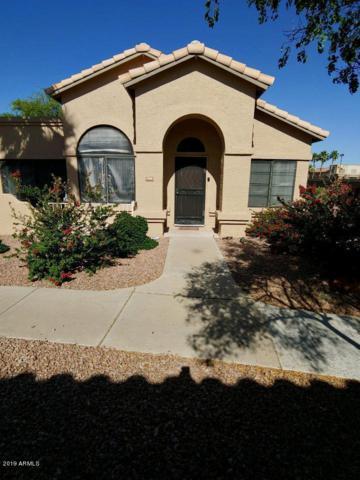14300 W Bell Road #308, Surprise, AZ 85374 (MLS #5932913) :: Phoenix Property Group
