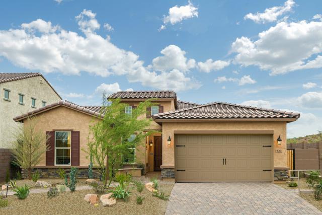 522 E Brisa Drive, Phoenix, AZ 85085 (MLS #5932914) :: The Kenny Klaus Team
