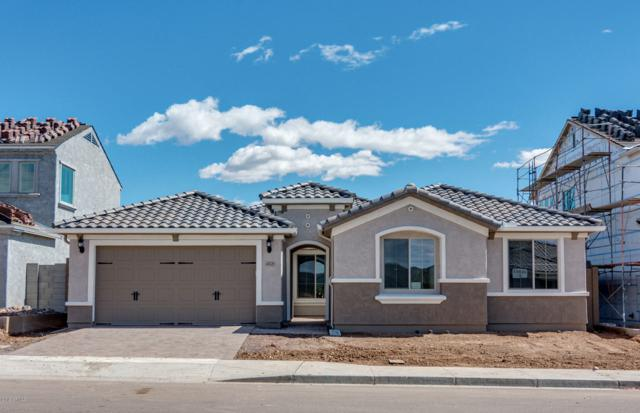 44529 N Sonoran Arroyo Lane, New River, AZ 85087 (MLS #5932915) :: Revelation Real Estate