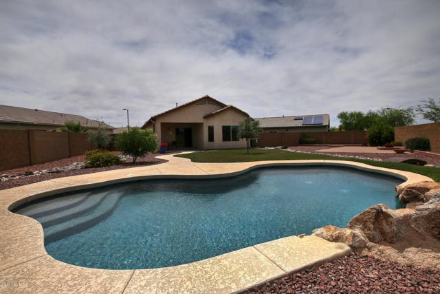 7184 W Sonoma Way, Florence, AZ 85132 (MLS #5932966) :: The Pete Dijkstra Team