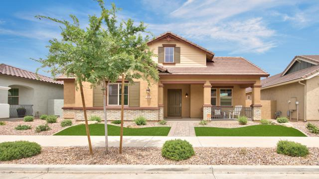4210 E Cynthia Street, Gilbert, AZ 85295 (MLS #5932969) :: Revelation Real Estate