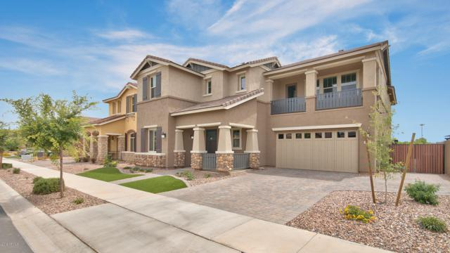 4209 E Cynthia Street, Gilbert, AZ 85295 (MLS #5933008) :: The Kenny Klaus Team