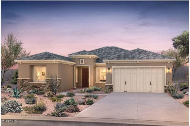 7856 S 164TH Avenue, Goodyear, AZ 85338 (MLS #5933011) :: The Bill and Cindy Flowers Team