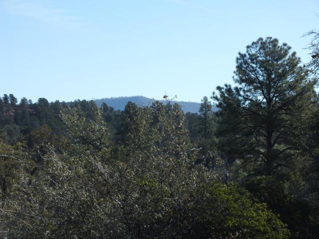 921 N Scenic Drive, Payson, AZ 85541 (MLS #5933084) :: The Daniel Montez Real Estate Group