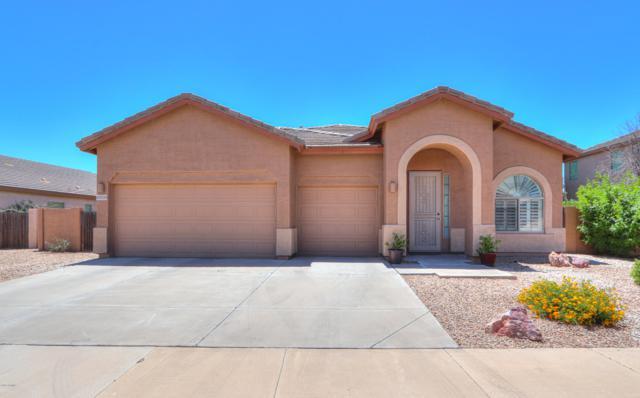 43559 W Chambers Court, Maricopa, AZ 85138 (MLS #5933125) :: Revelation Real Estate