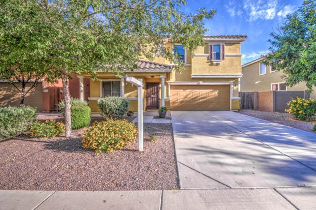 3451 E Terrace Avenue, Gilbert, AZ 85234 (MLS #5933163) :: The Carin Nguyen Team
