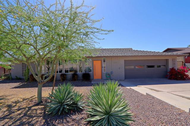 6810 N 24TH Place, Phoenix, AZ 85016 (MLS #5933226) :: Conway Real Estate