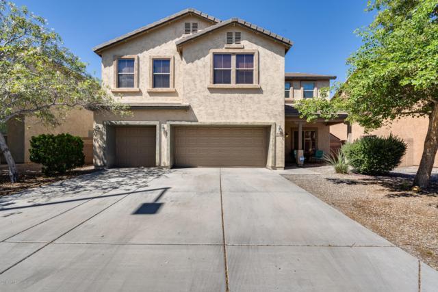 30167 W Mulberry Drive, Buckeye, AZ 85396 (MLS #5933227) :: The Kenny Klaus Team