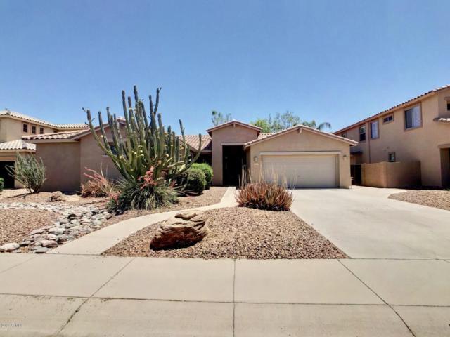 4223 S Nash Way, Chandler, AZ 85249 (MLS #5933304) :: The Daniel Montez Real Estate Group