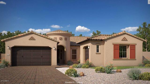 3120 E Desert Lane, Phoenix, AZ 85042 (MLS #5933341) :: The Kenny Klaus Team