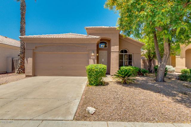 230 S Pineview Place, Chandler, AZ 85226 (MLS #5933356) :: Revelation Real Estate