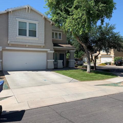 4223 E Sheffield Avenue, Gilbert, AZ 85296 (MLS #5933377) :: Revelation Real Estate