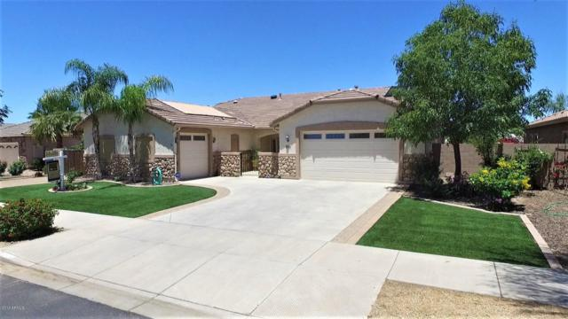 21768 E Escalante Road, Queen Creek, AZ 85142 (MLS #5933403) :: Revelation Real Estate