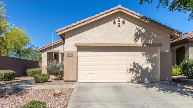 40702 N Trailhead Way, Phoenix, AZ 85086 (MLS #5933461) :: Revelation Real Estate