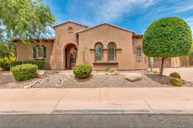 12886 W Oyer Lane, Peoria, AZ 85383 (MLS #5933569) :: CC & Co. Real Estate Team