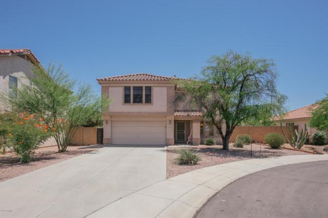9143 N 82ND Lane, Peoria, AZ 85345 (MLS #5933644) :: Occasio Realty