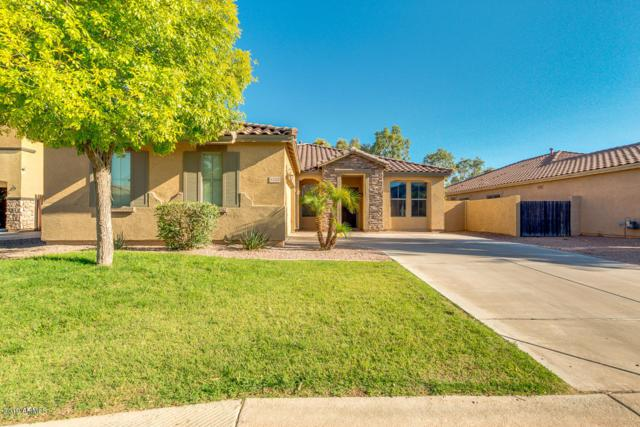 4223 E Gleneagle Drive, Chandler, AZ 85249 (MLS #5933822) :: Revelation Real Estate