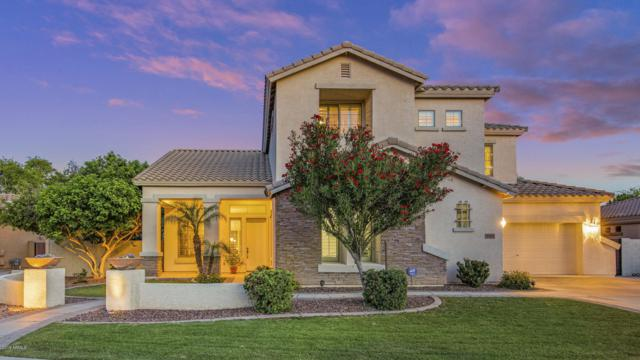 503 E Kaibab Place, Chandler, AZ 85249 (MLS #5933887) :: Revelation Real Estate