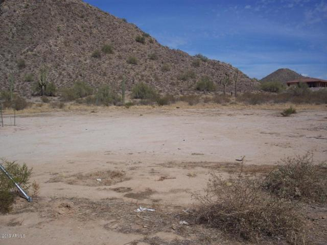 31431 N Pamela Drive, San Tan Valley, AZ 85142 (MLS #5933895) :: Revelation Real Estate