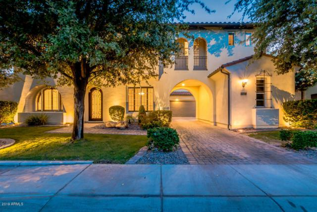 4330 S Rosemary Place, Chandler, AZ 85248 (MLS #5934019) :: The Kenny Klaus Team