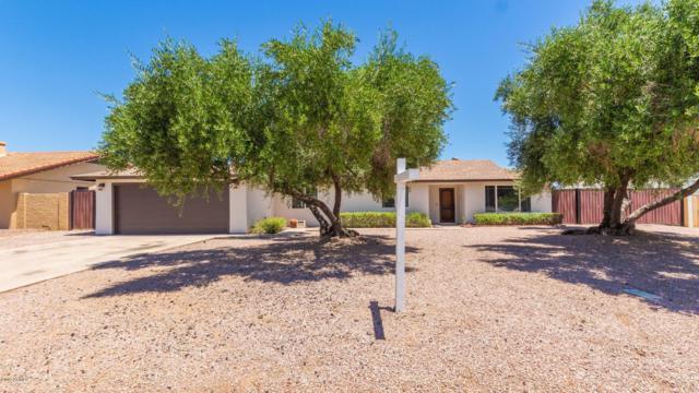 113 S Galaxy Drive, Chandler, AZ 85226 (MLS #5934051) :: Revelation Real Estate