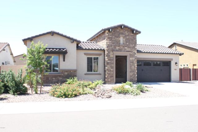 9195 W Louise Drive, Peoria, AZ 85383 (MLS #5934108) :: Team Wilson Real Estate