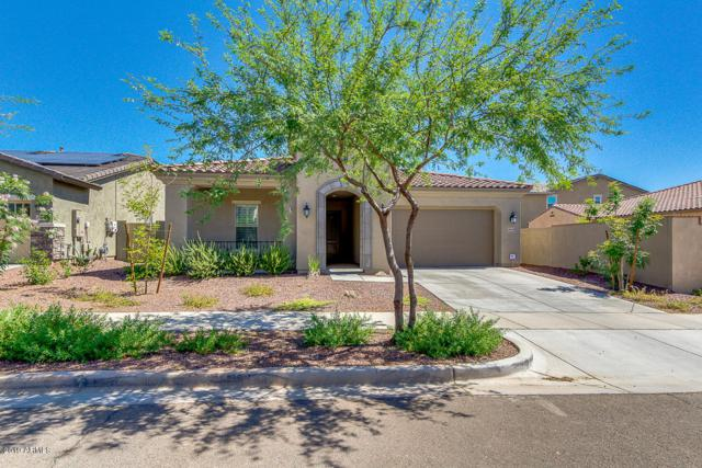20438 W Park Meadows Drive, Buckeye, AZ 85396 (MLS #5934116) :: The Property Partners at eXp Realty