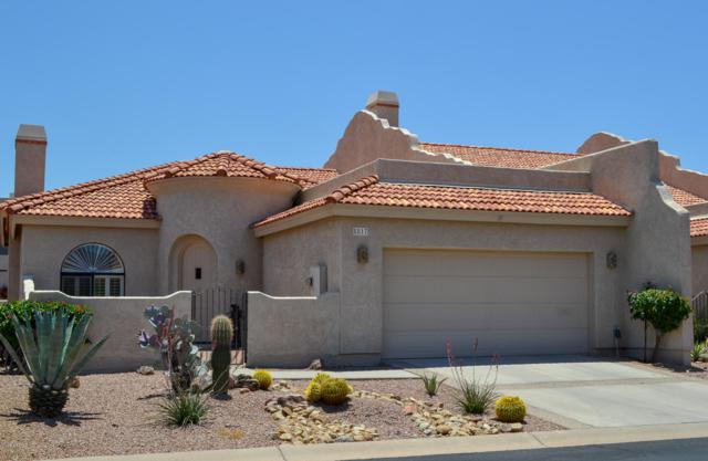 8817 E Greenview Drive, Gold Canyon, AZ 85118 (MLS #5934197) :: The Kenny Klaus Team
