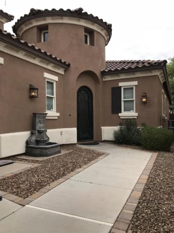 3266 S Cottonwood Drive, Chandler, AZ 85286 (MLS #5934221) :: CC & Co. Real Estate Team