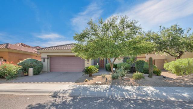 22016 N 36TH Street, Phoenix, AZ 85050 (MLS #5934304) :: RE/MAX Excalibur