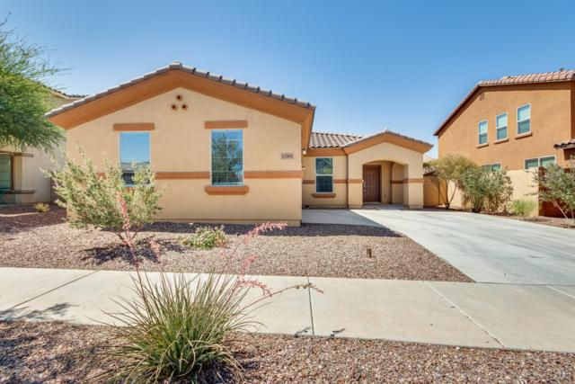 17001 W Shiloh Avenue, Goodyear, AZ 85338 (MLS #5934339) :: Occasio Realty