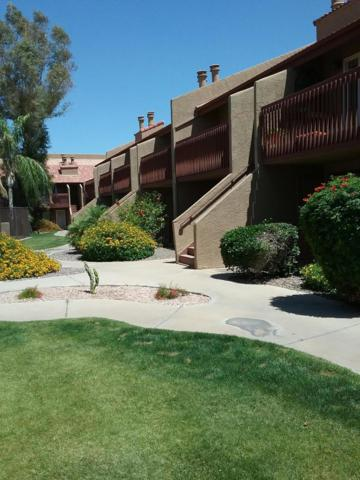 14203 N 19TH Avenue #1046, Phoenix, AZ 85023 (MLS #5934356) :: The W Group