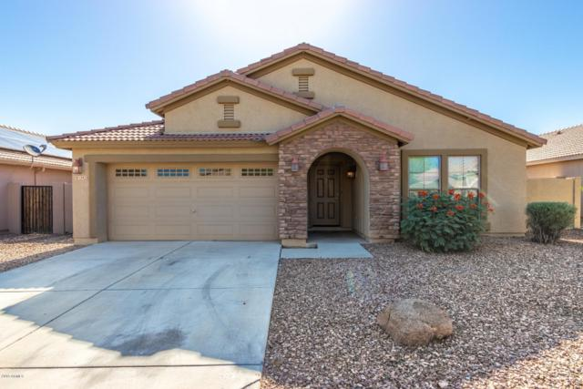 1542 N Desert Willow Avenue, Casa Grande, AZ 85122 (MLS #5934453) :: Keller Williams Realty Phoenix