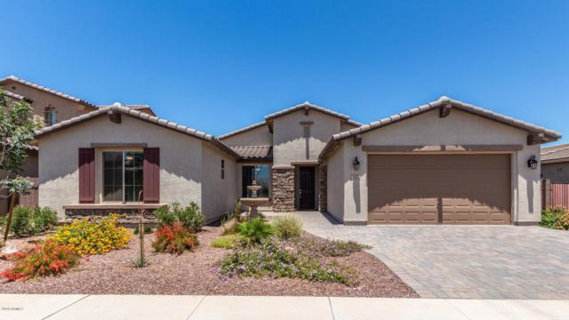 640 W Honey Locust Avenue, Queen Creek, AZ 85140 (MLS #5934531) :: The Ford Team