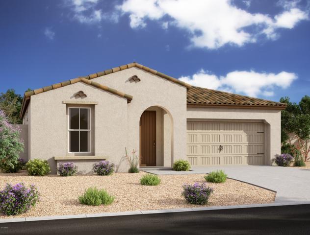 684 W White Sands Drive, San Tan Valley, AZ 85140 (MLS #5934575) :: The Kenny Klaus Team