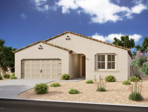 628 W White Sands Drive, San Tan Valley, AZ 85140 (MLS #5934597) :: The Kenny Klaus Team