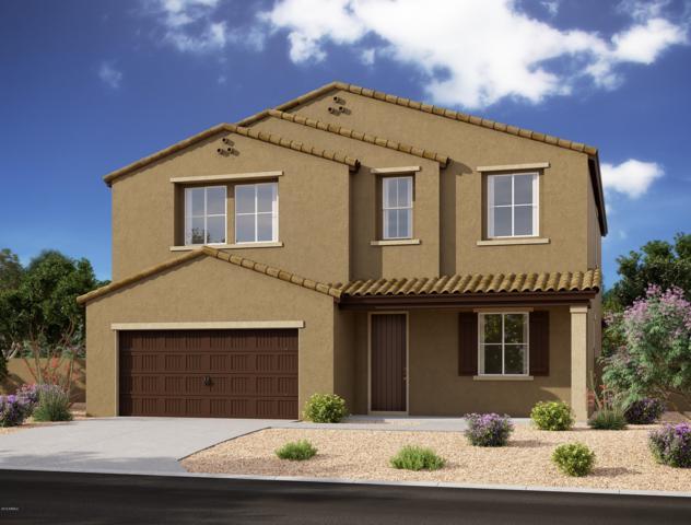 596 W White Sands Drive, San Tan Valley, AZ 85140 (MLS #5934619) :: The Kenny Klaus Team