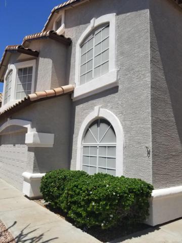 1724 E Blackhawk Drive, Phoenix, AZ 85024 (MLS #5934641) :: Brett Tanner Home Selling Team