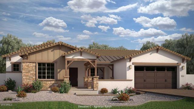3108 E Desert Lane, Phoenix, AZ 85042 (MLS #5934687) :: Revelation Real Estate