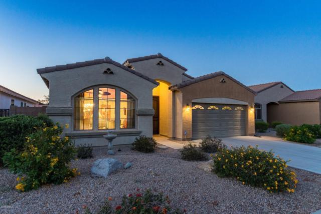 18446 E Azul Court, Gold Canyon, AZ 85118 (MLS #5934690) :: The Kenny Klaus Team