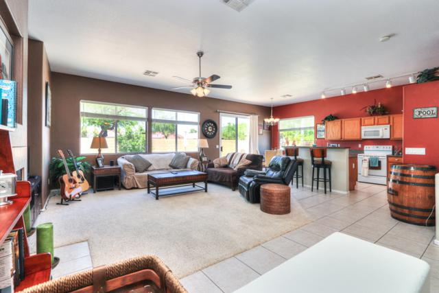 13688 W Ironwood Street, Surprise, AZ 85374 (MLS #5934828) :: Occasio Realty