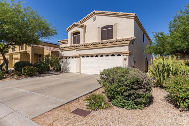 34201 N 43RD Street, Cave Creek, AZ 85331 (MLS #5934887) :: The Daniel Montez Real Estate Group