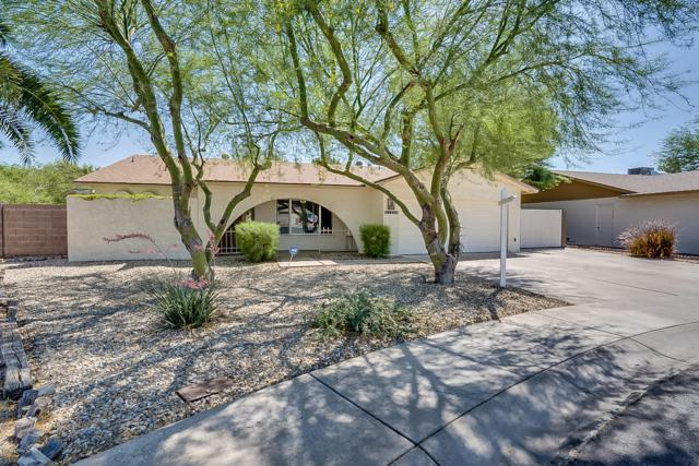 2127 S Estrella Circle, Mesa, AZ 85202 (MLS #5934902) :: Occasio Realty