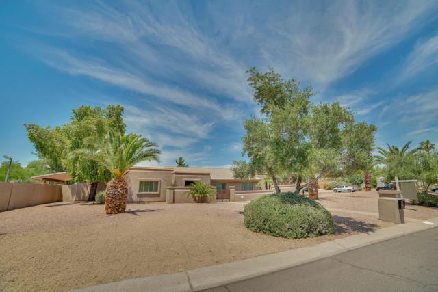 8010 E Larkspur Drive, Scottsdale, AZ 85260 (MLS #5934909) :: CC & Co. Real Estate Team