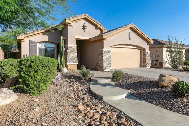 1629 W Dion Drive, Anthem, AZ 85086 (MLS #5935018) :: Revelation Real Estate