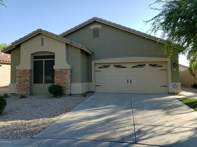 1901 E Hawken Place, Chandler, AZ 85286 (MLS #5935034) :: Revelation Real Estate