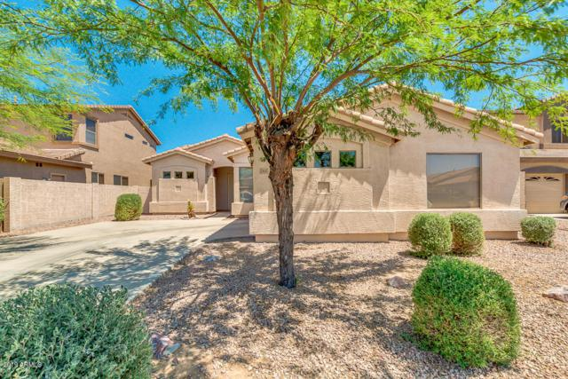 1460 E Dana Place, Chandler, AZ 85225 (MLS #5935095) :: The Daniel Montez Real Estate Group