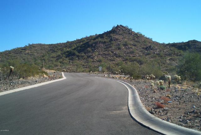0 S Kings Ranch Road, Gold Canyon, AZ 85118 (MLS #5935142) :: The Kenny Klaus Team